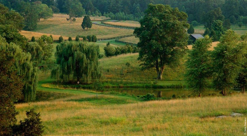 A Nelson Byrd Woltz farmland restoration