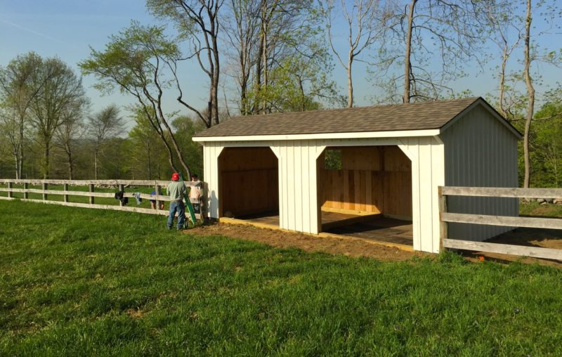 Our Amish-built shed arrived on a truck.